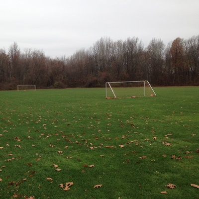 athletic field with woods in background